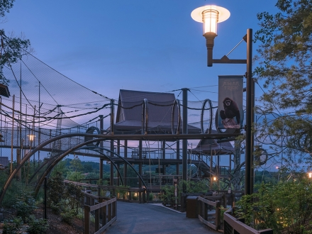 Area lighting illuminates Zoo Knoxville's new Asian Trek experience